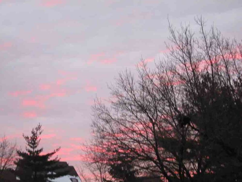 Pink-blue-sky-for-web