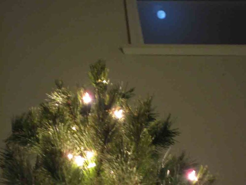 Christmas-tree-w-full-moon-for-web