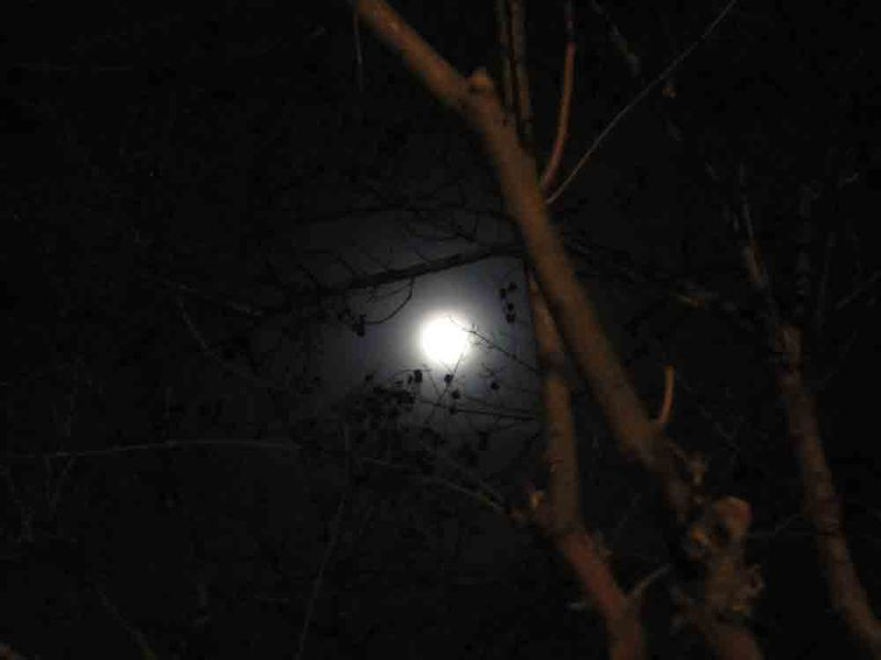 March-2011-great-full-moon