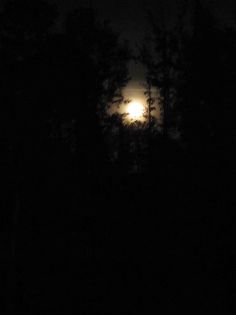 Full-moon-april-19-for-web