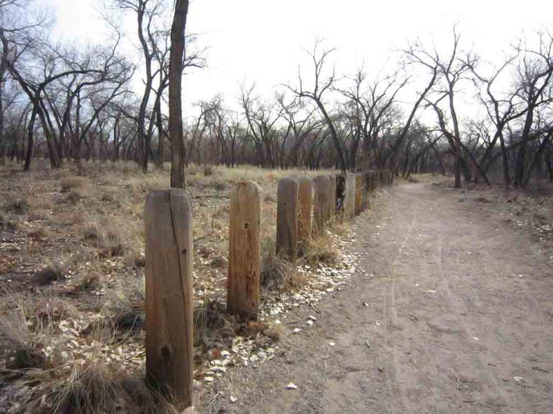 High-desert-posts-for-web
