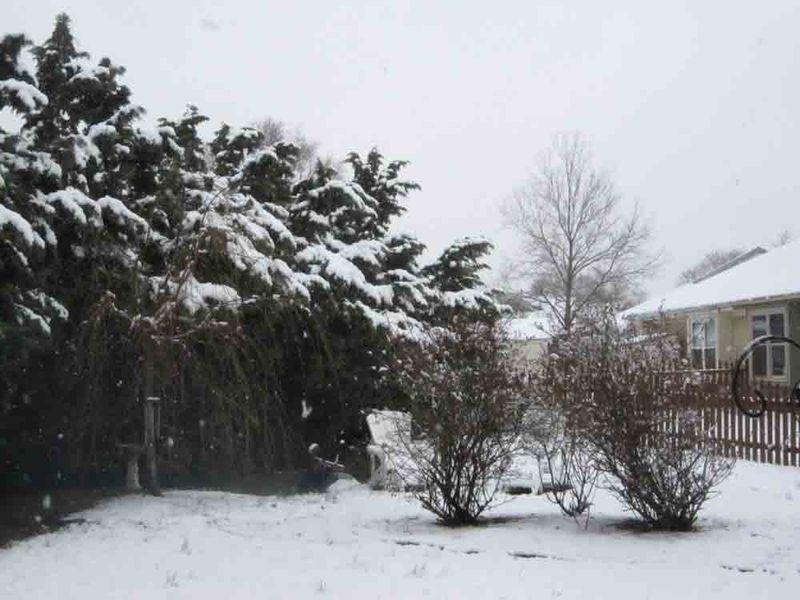 Snowy-spring-break-for-web
