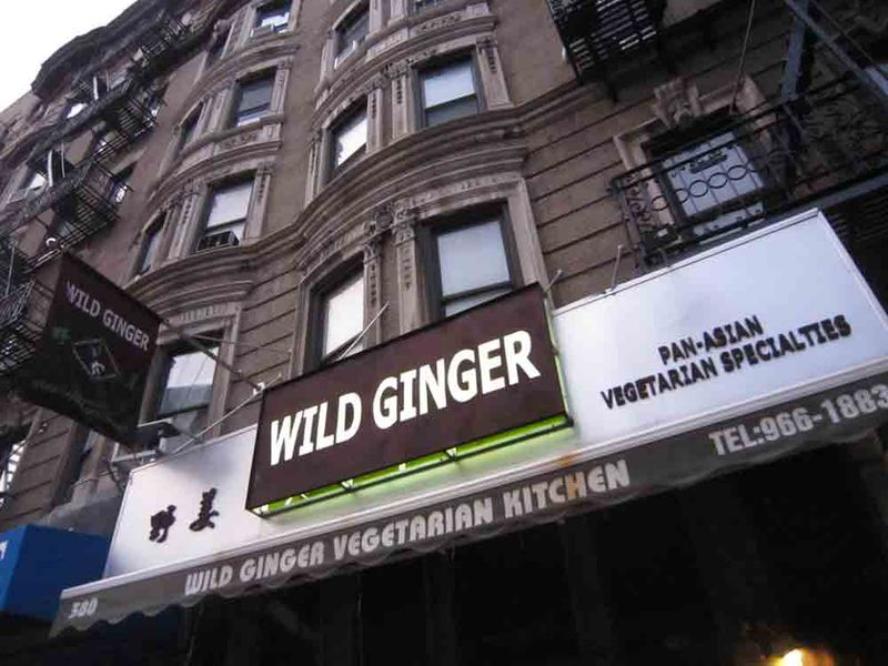 Wild-ginger-for-web