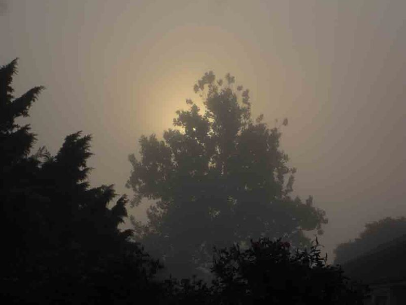 Foggy-sunrise-for-web