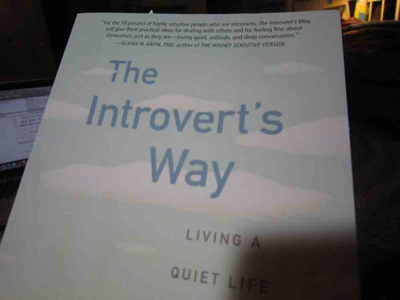 The-introverts-way-for-web-2