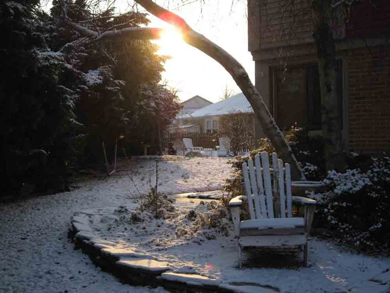 Sunrise-snowy-morning-for-web