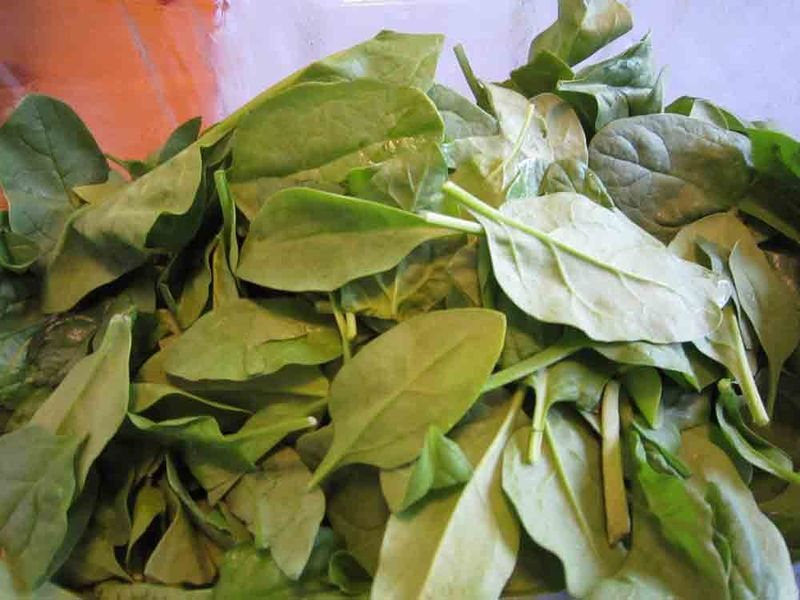 Fresh-spinach-for-web