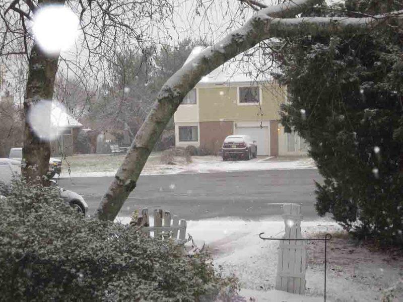 Thursday-snow-for-web