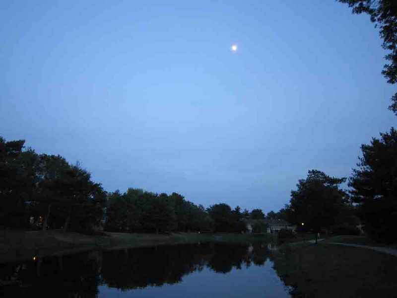 Moon-in-sky-for-web