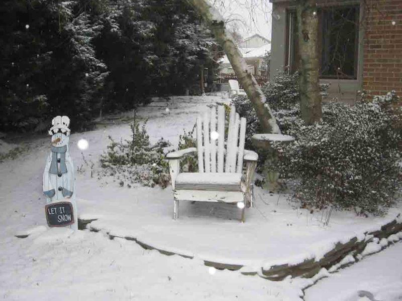 Snowy-yard-for-web