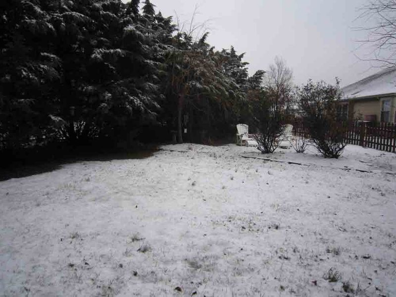 Snowy-saturday-for-web-1-24-15