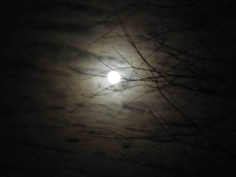 Snow-moon-for-web