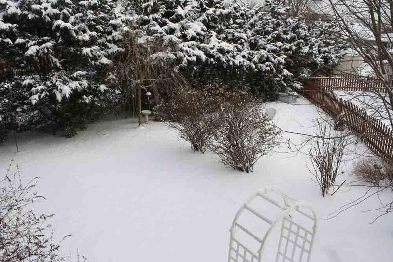 12-17-snow-1